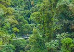 Central America - Costa Rica: Hanging Bridges and La Fortuna Waterfall Nature Hike