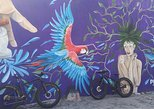 Fat Bike Graffiti and Art Tour in Puerto Vallarta