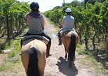 Horseback ride through vineyards followed by gourmet asado lunch