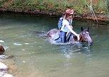 Horseback Riding - Experience A Unique Adventure On Horseback