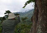 Arroyo Negro Adventure at El Triunfo Biosphere Reserve (V Polígon)