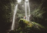 The Sekumpul Waterfall and Temple Small Group Tour