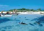 Full Day Española Island