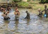 Australia & Pacific - Fiji: Half Day Nadi Sightseeing & Mud Pool Tour