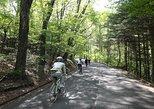 November 3-4 Cycling Tour in Karuizawa by Electric Powered Bike