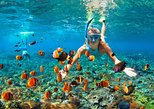 Full Day Snorkeling Trip to Raya Yai