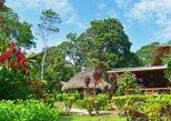 2 Days - Amazon Adventure in Misahualli
