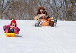 Ski Resort Sledding and Crab Lunch Buffet