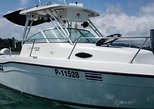 Disco Pirate Fishing Charters Los Suenos