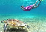 Tour Snorkel Maya