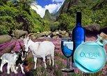 Iao Valley, Ocean Vodka Distillery & Lavender Farm with lunch