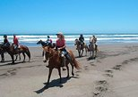 Horseback Ride on Beach and Sand Dunes from Santiago