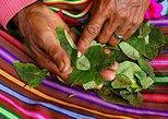 Coca Leaf Reading In Cusco