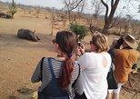 Game Drive and Waking Safari