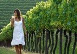Half-Day Countryside wine tour near Vienna