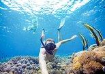 Snorkeling at Lembongan-Island Tour-Banana Boat-Lunch-Fast Boat Return