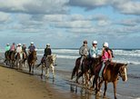 Amazing Horse Riding 60 minute Around The Black Sand-Waterfalls In A Privat Tour