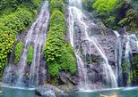 Banyumala waterfall - Twin lake - Traditional market - Botanical Garden - Lunch