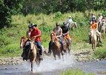 Dune Buggy & Horseback Riding | Uvero Alto & Punta Cana