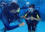 Combo diving and snorkeling half day tour