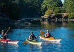 2-Hour Swartz Bay Kayak Tour and Restaurant Lunch