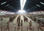 Private Half-Day Tour of Terracotta Warriors and Horses Museum From Xi'an