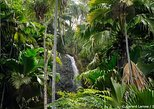 Half Day Discovery Tour of Vallee de Mai on Praslin Island