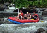 Ayung River Rafting Adventure with Lunch