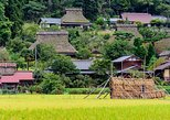 Northern Kyoto Prefecture: Amanohashidate, Ine & Miyama (from Osaka)
