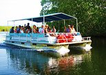 Black River Safari and YS Falls Tour from Negril