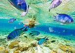 Snorkeling Glass Bottom Boat, Sharks & Stingrays & Natural Pool from Punta Cana