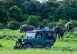 Udawalawe Safari Day Trip from Bentota & Surroundings - All Inclusive