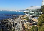 1-day Busan Marine VAN Tour Including Yonggungsa, Dongbaekseom, Songdo Skywalk