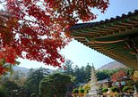 1-day Busan Maple & Healing Tour Including Trekking, Spa, and Cafe Street