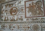 Bardo Museum and Medina Guided Half-Day Tour in Tunis
