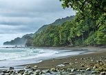 - Puerto Jimenez, COSTA RICA