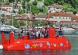 Semi Submarine excursions