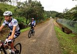 Arenal Volcano to El Castillo Bike Tour
