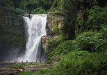 Full-Day Private Tour to Ubud Waterfall Visit with Lunch and All Transportation