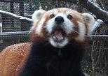 Miller Park Zoo General Admission