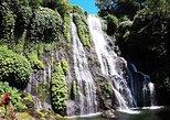 Private Tour: Banyumala Twin Waterfall