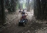 Bali ATV Ride and Volcano Sightseeing Tour