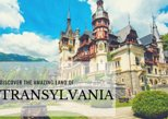 1-Day Private Tour: Discover Dracula & Peles Castles with a Sightseeing Tour of Brasov Included