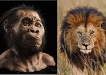 Cradle of Humankind Tour from Johannesburg