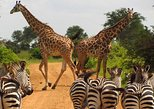 1 DAY BEST OF NAIROBI TOUR DAILY MORNING / AFTERNOON