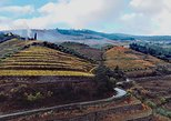 Douro Valley Premium Tour from Porto with lunch, wine tasting & river cruise