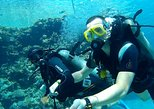 Full-Day Intro Diving and Snorkeling at Tiran Island