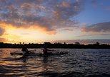 Mangroves, Sunset and Bioluminescence Kayak Tour