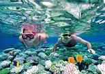 Private Tour Nha Trang - Wonderful Island Discovery