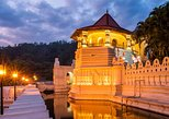 Private Kandy City Tour Including Peradeniya Royal Botanical Gardens